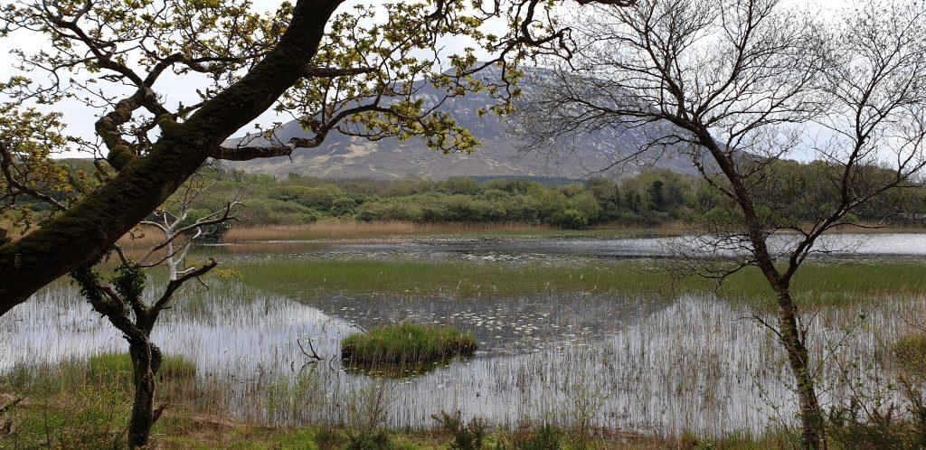 Lago en Connemara