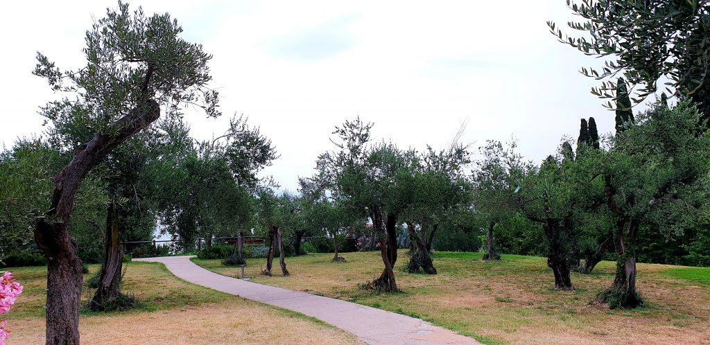 Parque TOMELLERI