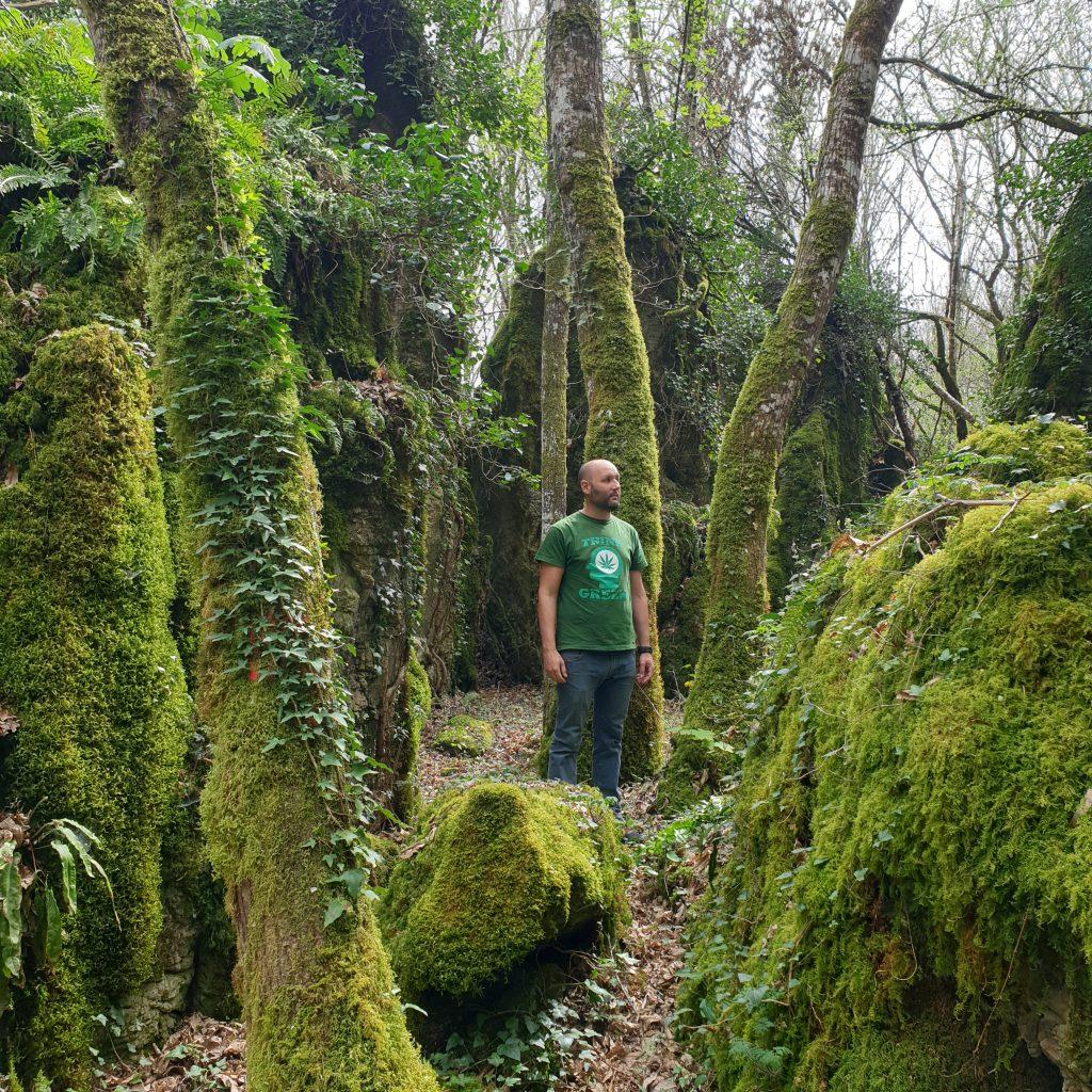 Bosque dos Grobos