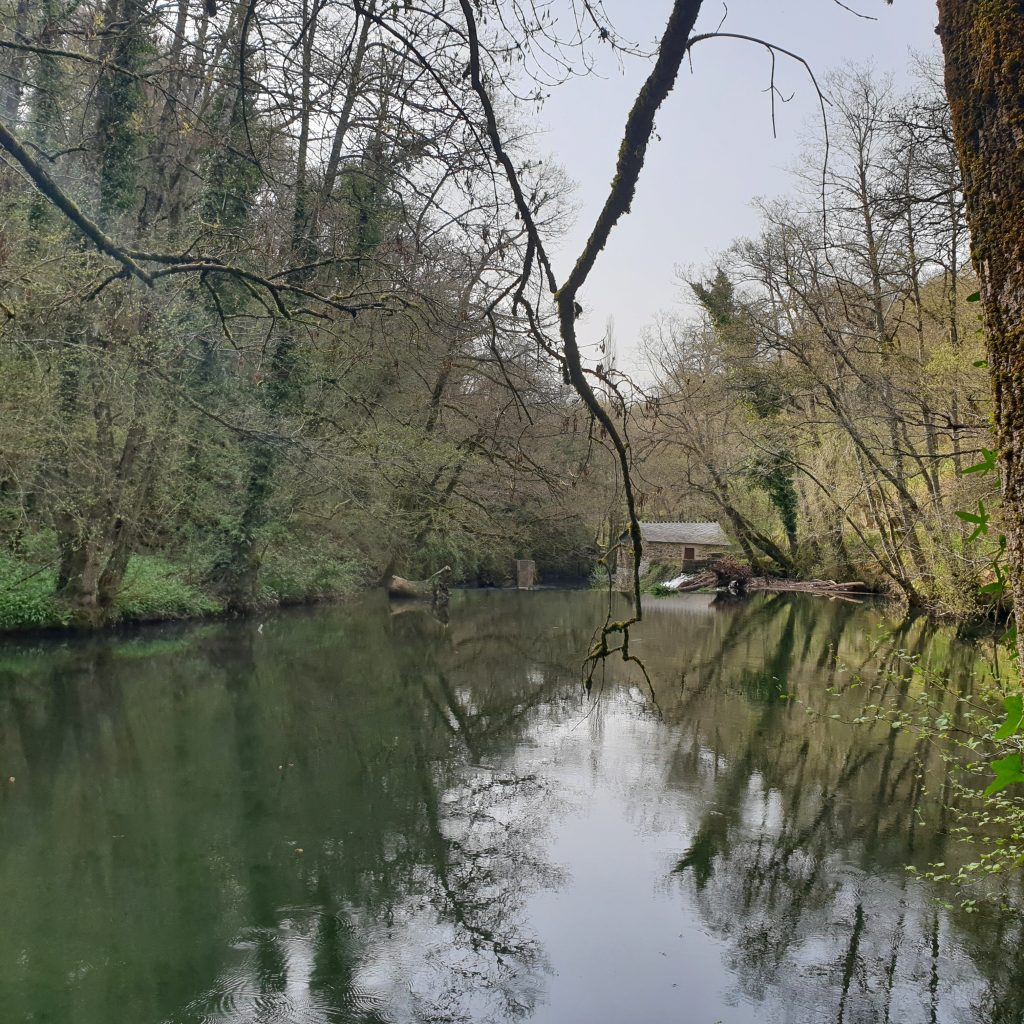 Acea Sarria e río